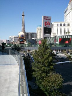 looking northward on the strip